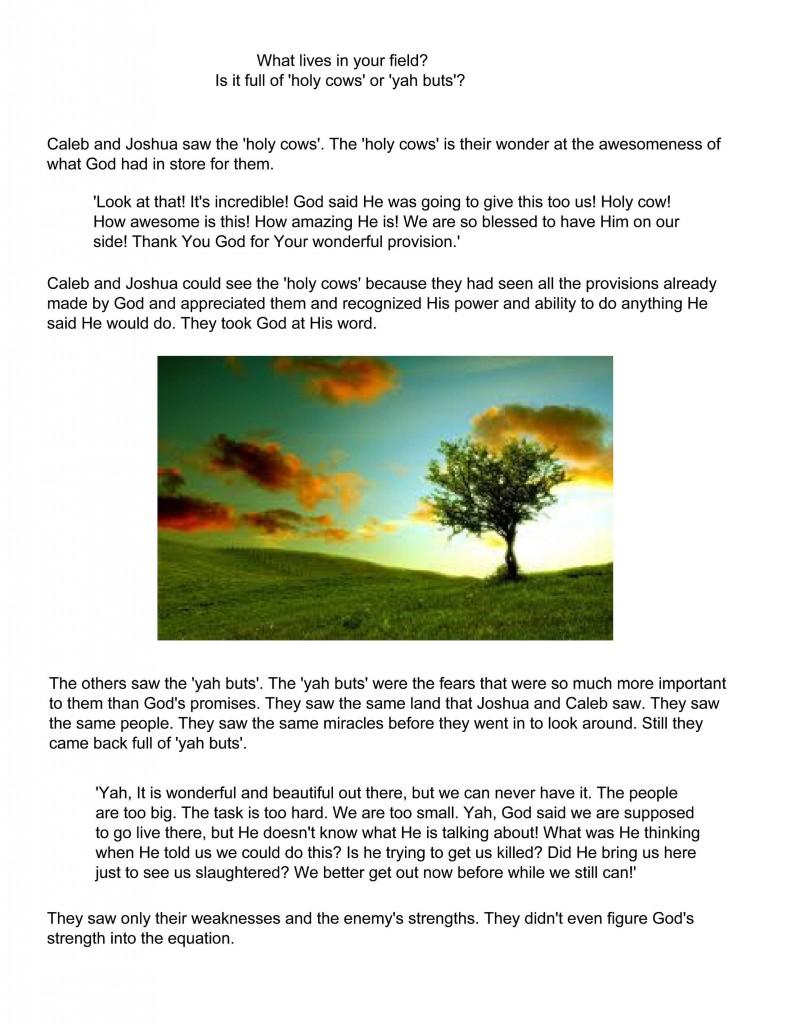 Holy Cows v Yah Buts pg 12