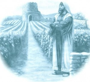 The Master carefully prepared the vineyard