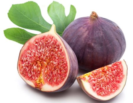 Fresh figs for the picking