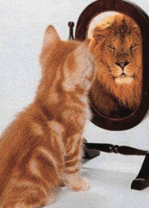 Which side of the mirror will you feed?