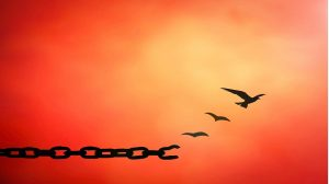 Forgiveness breaks the chain of bondage