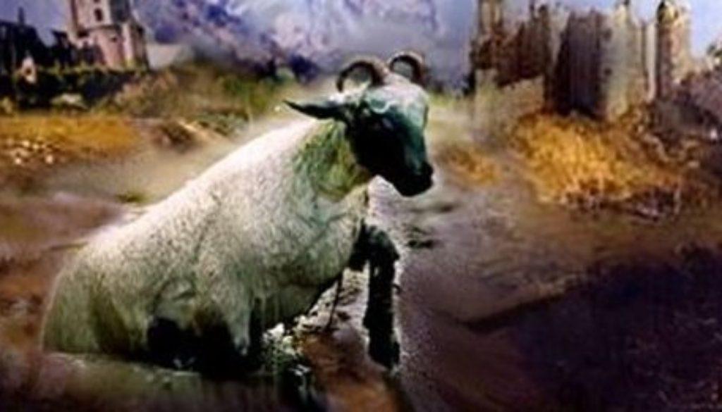 Revelation 13:11-18 Beast's Buddy