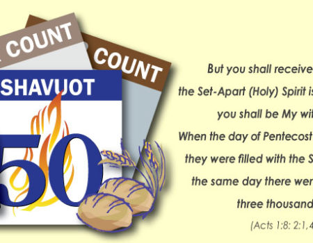 Numbers 28:26-31 Offering Reminder 5