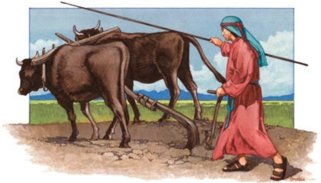 Deuteronomy 18:1-8 Levites Rites