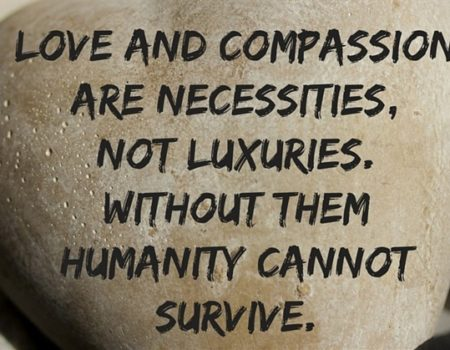 Deuteronomy 24:5-25:4 Compassionate Laws
