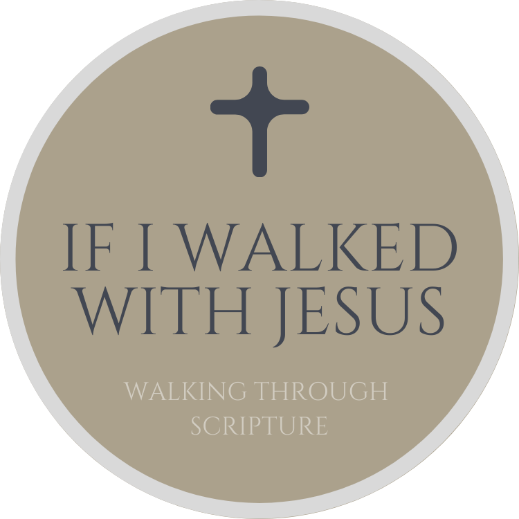 If I Walked With Jesus