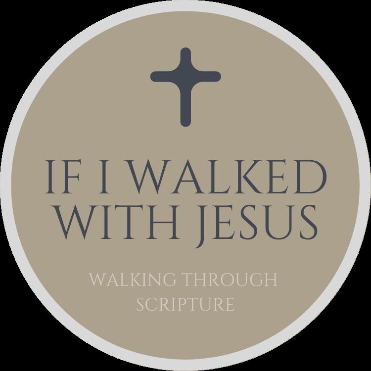 If I Walked With Jesus