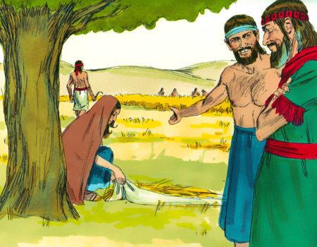 Ruth 2:1-23 A Tireless Worker