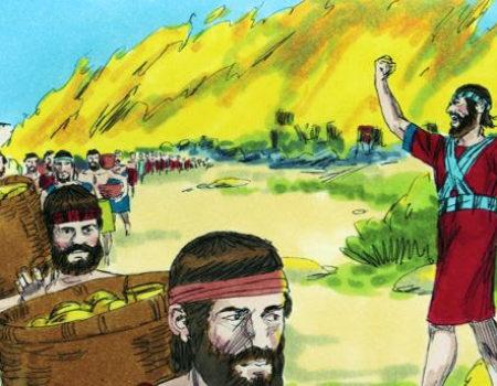 1 Samuel 30:16-30 Rescued