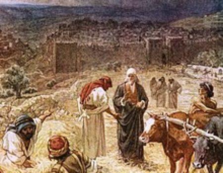2 Samuel 24:18-25 Mercy Spot
