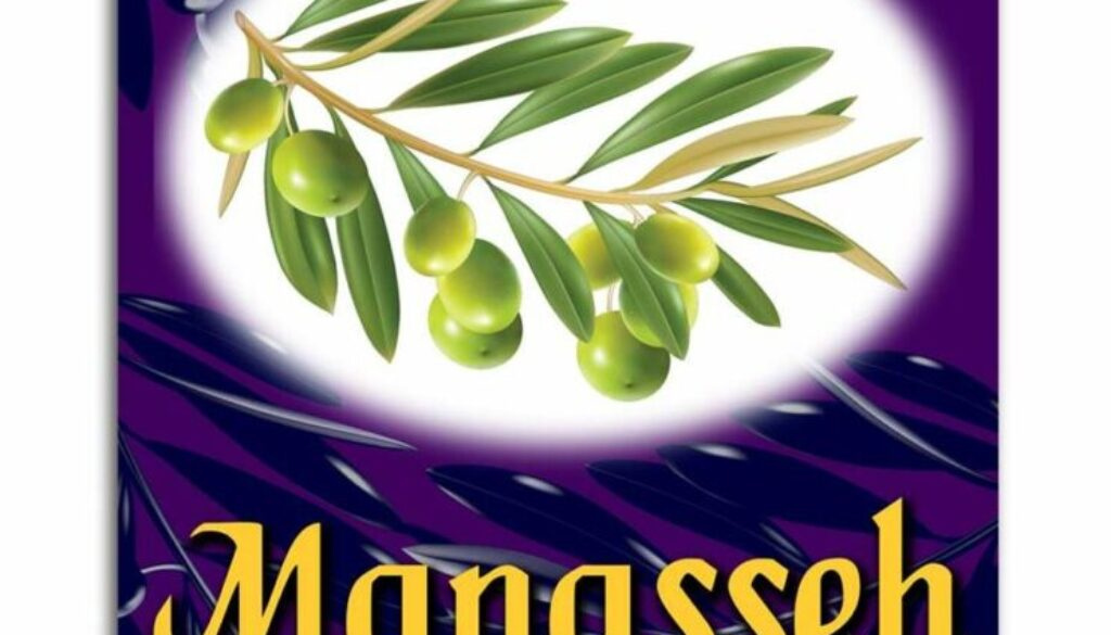 1 Chronicles 7:14-19 All Manasseh