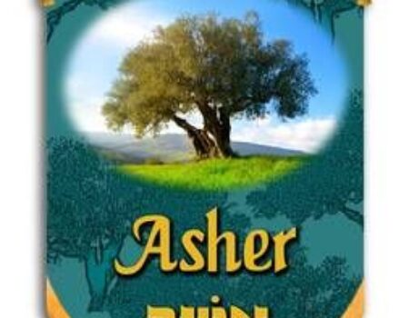 1 Chronicles 7:30-40 Asher's Tribe