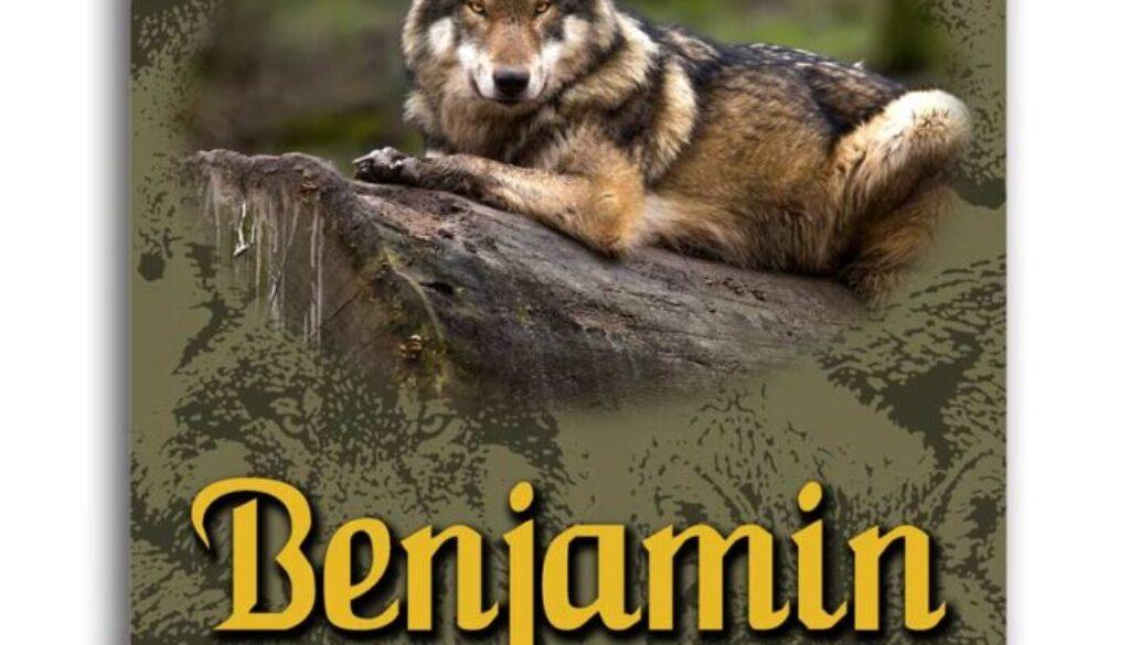 1 Chronicles 7:6-12 Benjamin's Tribe