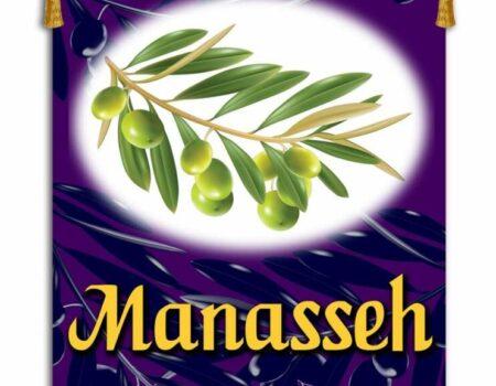 1 Chronicles 5:23-26 Manasseh's ½