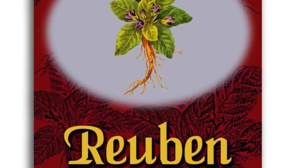 1 Chronicles 5:1-10 Reuben's Tribe