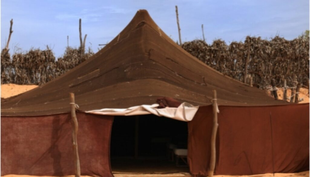 1 Chronicles 16:1-7 Ark's Home