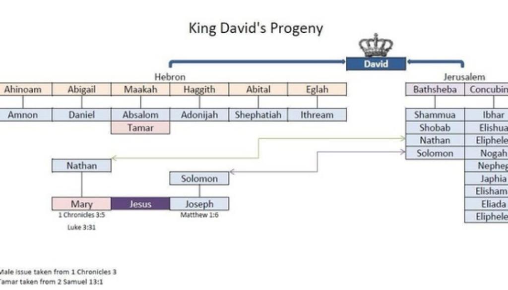 1 Chronicles 14:1-6 David's Family
